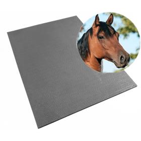 Tappeto in gomma per stalle - 122x183 cm -17 mm